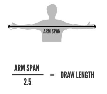 arm-span.jpg
